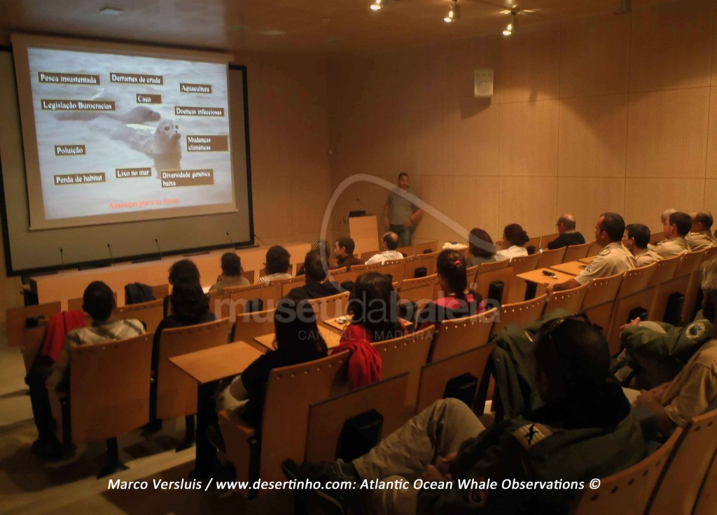 Desertinho Atlantic Whale observations: lectures and presentations